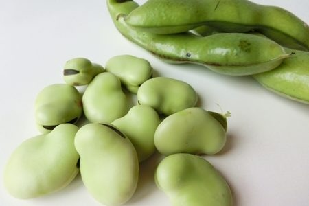 そら豆が黒い!変色してしまう原因と食べられるのかについて!