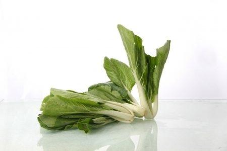 小松菜の保存方法!長持ちするコツはあるの?