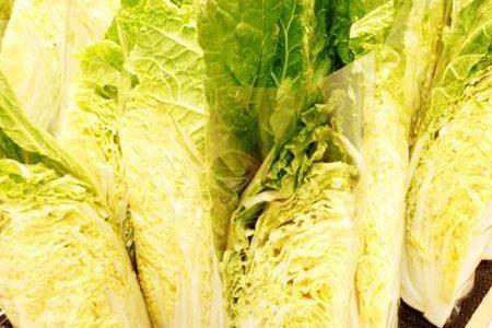 白菜は新聞紙にくるんで保存すると長持ちする?ない場合はどうする?