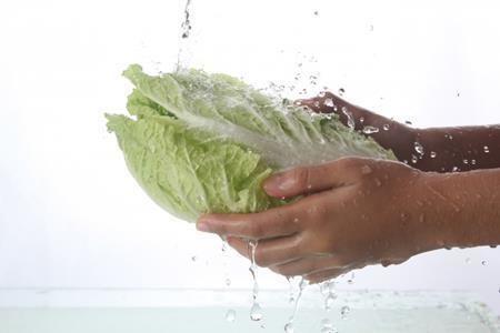 白菜の栄養と効能!食べ過ぎると体に悪い?