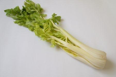 セロリは栄養豊富な野菜!でも食べ過ぎには注意!